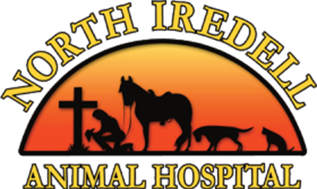 North Iredell Animal Hospital